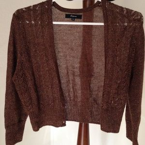 Express Cropped Sweater